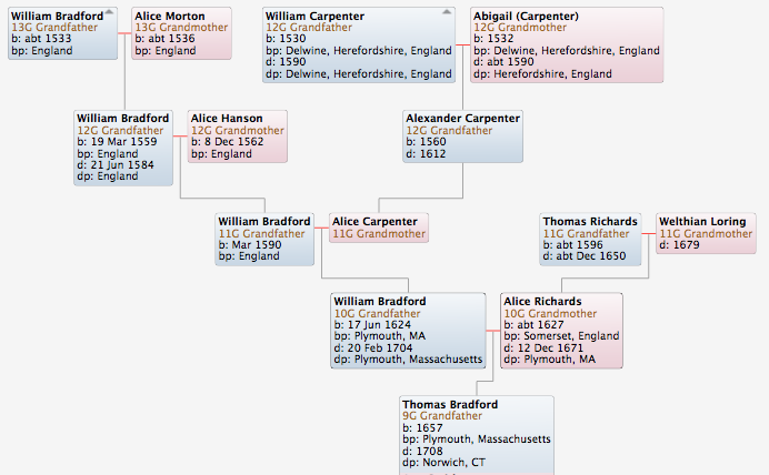 Family Tree of Thomas Bradford . . .